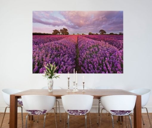 1-615 Lavendel