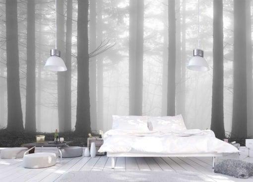 MU1460 - Fir Forest