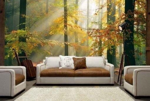 MU1442 - Sinfonia Della Foresta