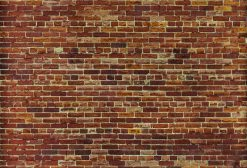 MU1409- Not just another Brick Wall