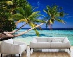 MU1195 - Palm Trees in the Maldives