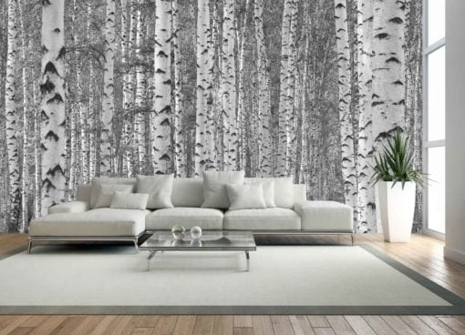 MU1131 - Birch Tree Forest
