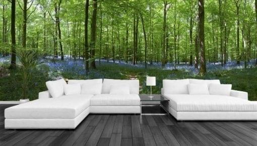 MU1118 - Bluebell Forest