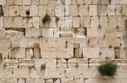 MU1101 - The Wailing Wall