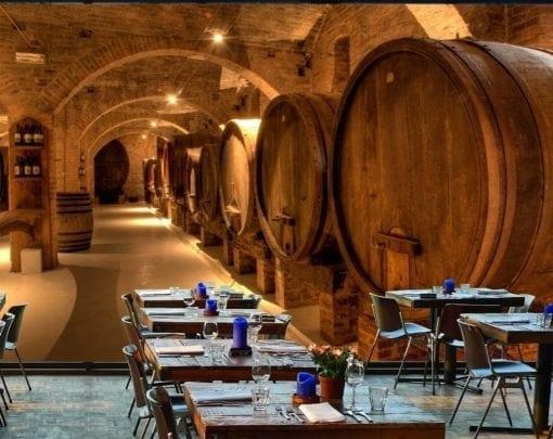 MU1504 - Wine Cellar in Tuscany