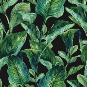 1753-Tropical-leaves
