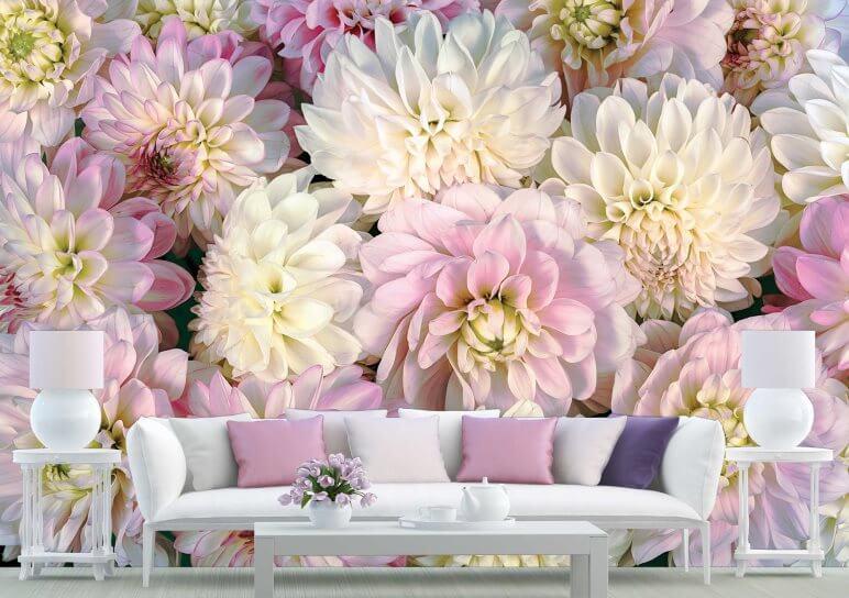 wall murals dahlia flowers